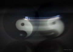 Yin and Yang in Motion - MM Intentional Blur (Different Aspects) Tags: macromondays intentionalblur yin yang motion blur