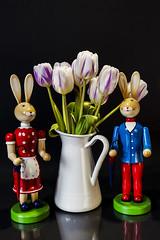 Osterhasen (Lutz.L) Tags: ostern hasen osterhasen tulpenstraus tulpen blumen vase