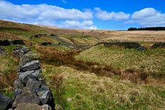 Drystone Walls (rustyruth1959) Tags: nikon nikond3200 tamron16300mm gettyimages calderdale yorkshire uk outdoor walls moorland moors grass fence drystonewalls pennineway withensclough sky blue ditch green trees ruins stones stonewalls landscape marsh bog highermoor footpath