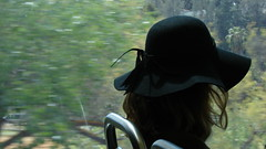 Lady With The Black Hat (Rand Luv'n Life) Tags: odc our daily challenge lady wearing black hat bokeh san diego trolley passenger trees window view hair branches solitude reflection transit