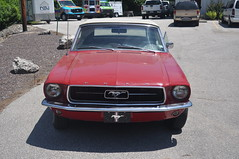 "1967 Ford Mustang Convertible • <a style=""font-size:0.8em;"" href=""http://www.flickr.com/photos/85572005@N00/33465231171/"" target=""_blank"">View on Flickr</a>"