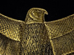 Closeup of Sheet gold collar depicting a falcon representing the god Horus found in King Tutankhamun's tomb New Kingdom 18th Dynasty Egypt 1332-1323 BCE (mharrsch) Tags: falcon horus winged gold pharaoh king ruler tutankhamun burial tomb funerary 18thdynasty newkingdom egypt 14thcenturybce ancient discoveryofkingtut exhibit newyork mharrsch premierexhibits collar