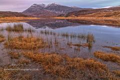 Arkle Gloaming (Shuggie!!) Tags: eveninglight gloaming grasses highlands hills landscape mountains reflections scotland shoreline snow sutherland water winter zenfolio karl williams karlwilliams