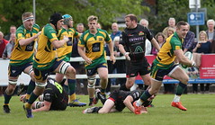 BW0Y2967 (Steve Karpa Photography) Tags: henleyhawks henley rugby rugbyunion game sport competition outdoorsport redruth