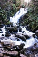 Torc Waterfall (PicsWhileWandering) Tags: torc waterfall water greenery trees rocks flowingwater killarneynationalpark killarney kerry ireland nature longexposure outdoors tranquil scenic on1pics