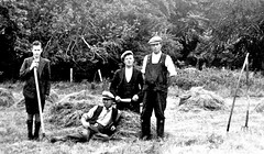 Harvesting Hay in the Fields (BEO- A Window into the Past) Tags: farming farm rural rurallife ireland éire eire beo heritage oidhreach galway gaillimh galwaycountycouncil galwayeducationcentre insight insightcentrefordataanalytics nuigalway nuig