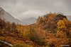 Glen Nevis (Scotland by NJC.) Tags: scotland glennevis autumn الـخَرِيف outono 秋天 jesen podzim efterår herfst otoño syksy automne herbst φθινόπωρο autunno 秋 가을 høst jesień toamnă осень höst sonbahar fall mountains hills highlands peaks fells massif pinnacle ben munro heights جَبَلٌ montanha 山 planina hora bjerg berg montaña vuori montagne βουνό montagna fjell lakes lochs reservoirs waters meres tarns ponds pool lagoon lago 湖 jezero sø meer järvi lac see λίμνη 호수 innsjø jezioro
