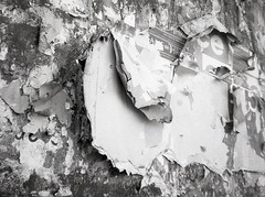 layers (OhDark30) Tags: olympus 35rc 35 rc film 35mm monochrome bw blackandwhite fomapan 200 rodinal bwfp poster peeling billboard layers