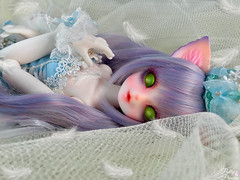 A Picture of Innocence (Pullipprincess) Tags: bjd balljointeddoll abjd luts cute kawaii anthro cat ball jointed doll dolls bakeneko indoor light white resin kdf kiddelf zuzu corni
