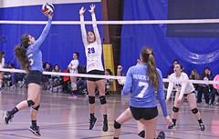 IMG_2594 (SJH Foto) Tags: girls volleyball teen teenager team quickset storm u14s net battle spike block action shot jump midair tip