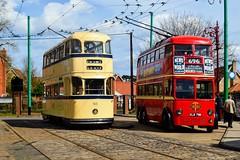 796 ELB796 + 513 (PD3.) Tags: east anglia transport museum bus buses trolley trolleybus tram trams carlton coalville lowestoft england uk eatm london 796 elb796 elb leyland metro camell 1938 sheffield 513 roberts