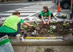 2017.04.29 Vermont Ave Garden-Work Party Washington, DC USA 4171