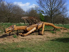 Dragon (Martellotower) Tags: steve iredale wood danby moors centre sculpture chain saw dragon