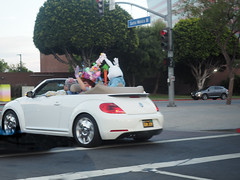 041617_1673 MISTI COOPER PIX of Easter bunny car in WEHO CA (DRUified) Tags: rebeccadru druified thesoulphotographer rebeccadruphotography transformationalphotography empath intuitive iamlove portraitphotography landscapephotography misticooper spiritualalchemist spiritualecstasy spiritualxtc roadtrip ontheroadwithspiritualxtc toronto chooselove healers energetichealer medicalintuitive transforminglivesactivatingsouls transformation transforminglives activatingsouls westhollywood california usa getolympus olympuscamera iwanttobeanolympusvisionary olympusomd olympusem1 olympusem5