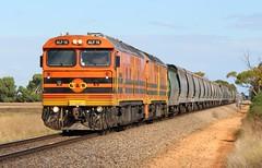 1453S Mallala 25/04/2017 (Dom Quartuccio) Tags: 1453s alf18 alf22 gwa graintrain mallala sa south australia train railway rail grain bowmans