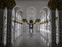 PillarsSZM (magicj123) Tags: raw sheikhzayedmosque summilux28