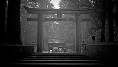 Nikko (richard.scott1952) Tags: architecture building stone carving decoration scrollwork ornate solid ruins old gate garden temple shrine deity devotion buddhist religion spiritual culture heritage history tradition travel tourist trip japan view landscape scene scenic leicasummicron50mmf20rigid leica m8