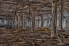 Aluminum Rain (janet_frederick) Tags: copyright urbandecay detroit kelvinator