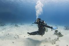 1204 16a (KnyazevDA) Tags: disabled diver disability diving owd underwater undersea padi redsea buddy handicapped paraplegia paraplegic