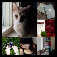 April 2017 Photo Challenge (Jules (Instagram = @photo_vamp)) Tags: photochallenge collage photos cat books flowers selfie alcohol stuff