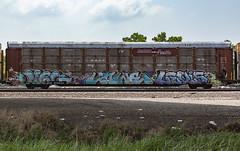 (o texano) Tags: houston texas graffiti trains freights bench benching jigl lowe levis mfk