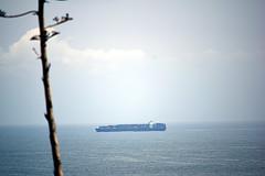 DSC_1413-61 (jjldickinson) Tags: nikond3300 106d3300 sanpedro losangeles sky cloud lookoutpointpark ocean water shippingcontainer container ship containership portoflosangeles harbor nikon55200mmf456gedifafsdxvrnikkor promaster52mmdigitalhdprotectionfilter