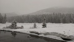 Leaving Yellowstone in the Snow (sprout2008) Tags: yellowstone tetons