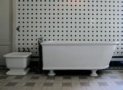 We get in these patterns (rwchicago) Tags: paris geometric museum tile bathroom bath geometry patterns muse tiles bathtub bidet lebain nissimdecamondo