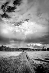 Drizzle (Appe Plan) Tags: road b trees sea summer sky bw white lake seascape storm black nature water rain clouds forest landscape nikon warm view sweden w nikkor drizzle vrmland appe gapern d700