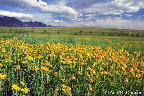 Photo - City of Boulder, Colorado - Open Space & Mountain Parks