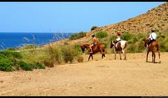 Menorca (Doctor Canon) Tags: sol sunshine boats barcos beaches yachts sailboats calas menorca yates playas coves baleares veleros balearic mditerraneo