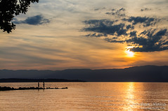 I'll be there (OneVision_MT) Tags: sunset lake france nikon silhouettes lac coucherdesoleil lakegeneva rhonealpes laclman d300s anthysurlman