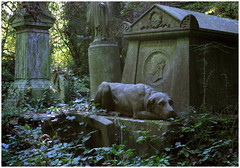 Devotion (snapscot) Tags: england cemeteries dog london dogs cemetery graveyard memorial graveyards cementerio tombstone canine devotion cemitrio tombstones canines highgatecemetery londonengland cementerios cemitrios thomassayere