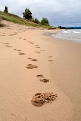 Tracks in the Sand (nikons4me) Tags: beach up bay sand michigan shoreline tracks footprints upperpeninsula lakesuperior autrain nikond7100