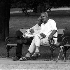 Old Friends (square format) (Kojotisko) Tags: park men bench brno cc creativecommons czechrepublic streetphoto