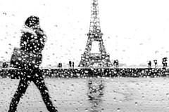 Woman walking near Eiffel Tower, Paris (Photos-Change-The-World) Tags: street leica people blackandwhite bw woman white black paris france rain noir noiretblanc femme eiffeltower eiffel nb best toureiffel environment monochrom rue blanc personne laurent environnement scheinfeld bestcapturesaoi elitegalleryaoi leicamonochrom laurentscheinfeld