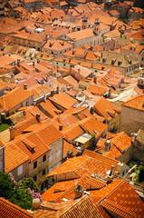 Odozgo (GaryTumilty) Tags: city trees homes windows red orange green yellow buildings warm rooftops croatia walls oldtown dubrovnik chimneys