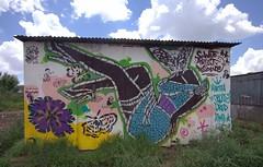 Soweto Artist Residence (Mr Baggins) Tags: streetart graffiti stencilart soweto kliptown ladyaiko