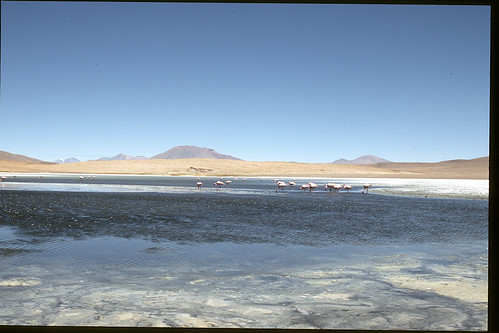 "Bolivia (Salar de Uyuni) • <a style=""font-size:0.8em;"" href=""http://www.flickr.com/photos/103823153@N07/12033433574/"" target=""_blank"">View on Flickr</a>"
