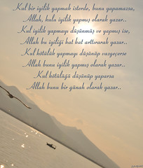 ﷲ (gLySuNfLoWeR) Tags: kul allah izmir iman ege martı islamiyet günah sevap ﷲ