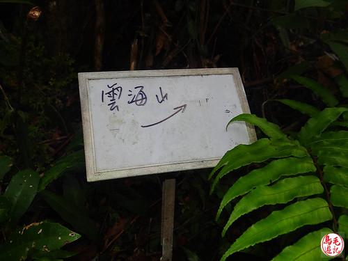 雲海山步道 (19).jpg