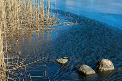 Reeds and rocks and ripples (Poupetta) Tags: reeds rocks ripples tlvikentlbayhelsingforshelsinkifinland