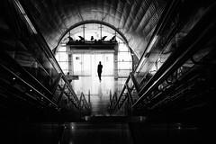 ...exit... (*ines_maria) Tags: streetphoto street panasonicdmcgx8 monochrome mono blancetnoire blackandwhite bw station metro exit people man light urbanart urban city uae dubai architecture