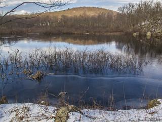 Otterhole Road Pond_15872