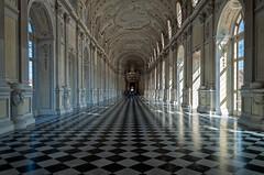 La Venaria Reale (90) (Mau1962) Tags: 2016 italia lavenaria nikon nikond5000 piemonte reggiadivenariareale residenzasabauda torino unesco diamondclassphotographer flickrdiamond