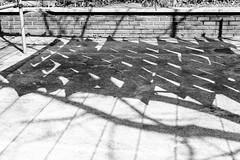 89/365 (Daegeon Shin) Tags: 365 nikon d750 nikkor 55mmf28 55mm bw launderette tendedero 니콘 니콘렌즈 흑백 빨래 빨래줄 그림자 shadow sombra jinju corea korea 진주 경남