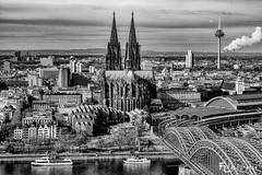 Köln: von oben 3/3