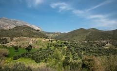 323_3770 (smülli) Tags: kreta crete hellas island mittelmeer mediterranian griechenland