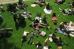 Afternoon on the Seine, 2017 (thomaspolcaster) Tags: paris arial street grass lawn france river chillin