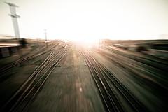 Diamonds Are Rust (Thomas Hawk) Tags: photowalking traintracks unitedstates pandoraphotowalk oakland unitedstatesofamerica photowalking07092009 photowalking070709 usa california eastbay fav10 fav25